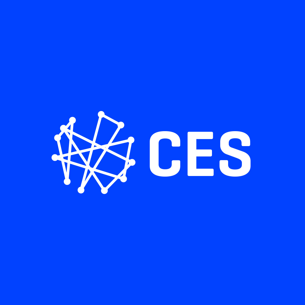 Consumer Electronics Show Identity System Re-brand